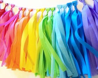 16-Tissue Paper -Tassel Garland- rainbow