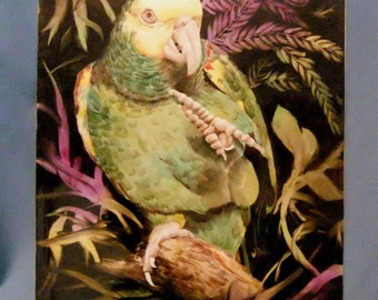 Unframed handpainted porcelain tile of Rosella bird