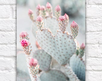 Heart Shaped Cactus, Flower Blooms, Botanical Art, Succulent Style Cacti, Pink, Mint, Pastel, Pop of Pink, Southwest, Desert Minimalist