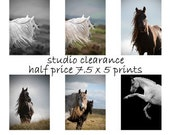 SALE - Horse home decor, equine art, horse photography, girls room art, nursery decor, horse print