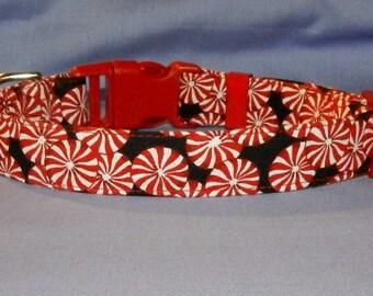 Peppermint Candy collar