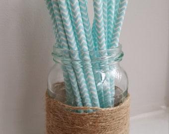 Mint and White Chevron Straws