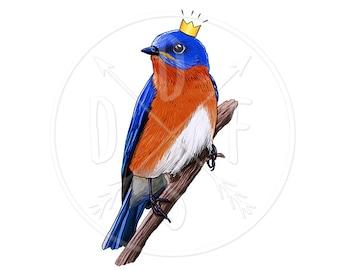 A0137 - Blue, Orange Bird in Crown - Digital Print for Instant Download. Printable Illustration, Clip art, Clipart. PNG, JPG files 8x10''.