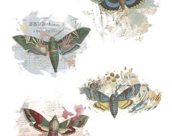 French Ephemera Butterfly Overlays - Blendable - Page Element Blender - Journaling - Digital Stamp - Digital Page Overlay - Texture Overlay