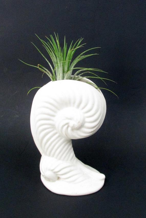 Vintage Haeger Pottery Shell Vase Matte White Nautilus Shell