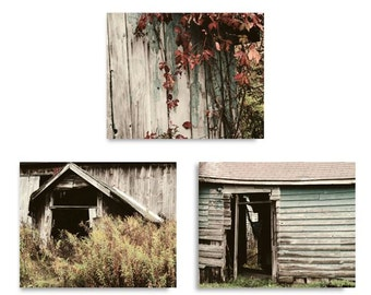 Set of 3 Barn Photographs - Weathered Barn - Rustic Barn - Nature Art - Red Vines - Rural - Wall Decor - Landscape - Autumn - Red Leaves