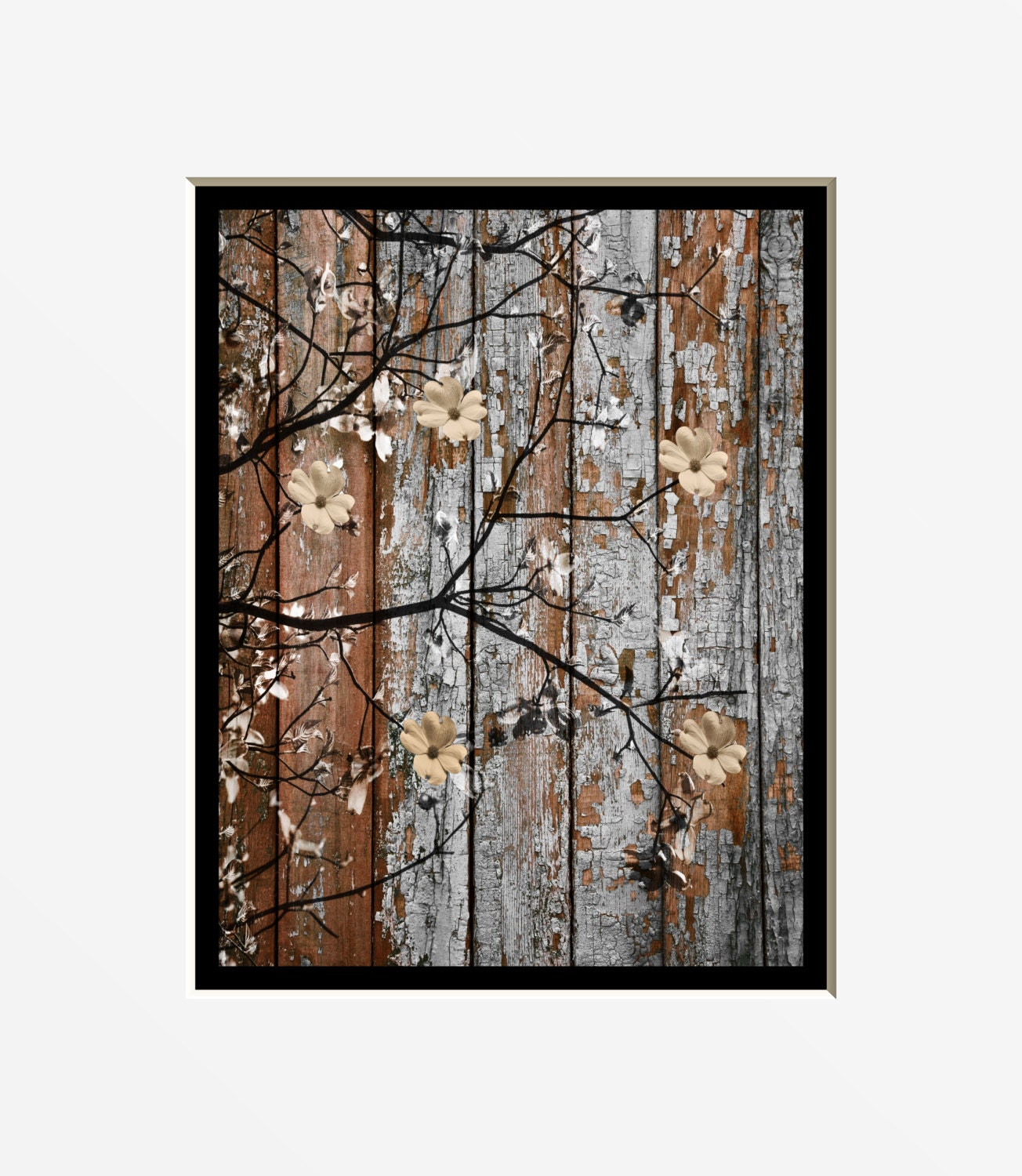 Rustic Brown Blue Wall Art Photography Dogwood Flowers