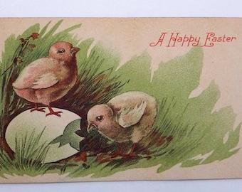 Antique 1910 Easter Chicks Broken Egg Postcard 21557
