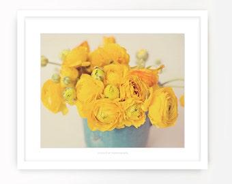 Yellow Ranunculus  {8x10 Fine Art Print}