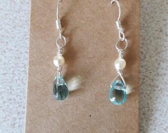 Handmade blue and pearl earrings
