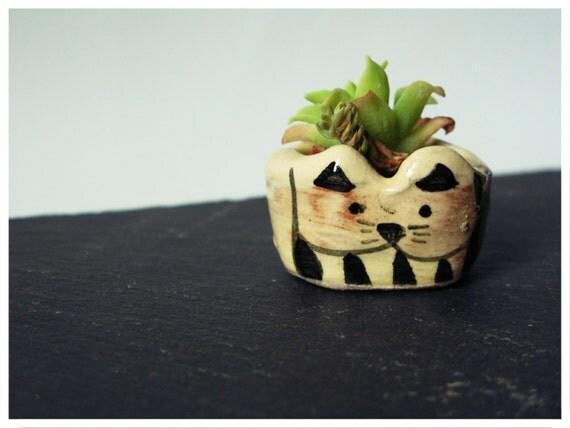 Mini pot animaux à suspendre
