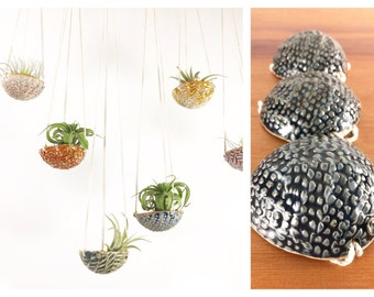 """air plant hanging planter / air plant holder / textured 3"""" wide / satin navy blue"""