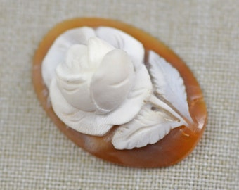 Antique Victorian Carved Shell Cameo