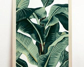 Banana Leaf Print Tropical Poster Palm Tree Art Affiche Nature Beach Leaves Jungle Green Botanical Original Hawaii Cayos Plant Illustration