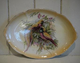 Antique Plate - Bird detailing