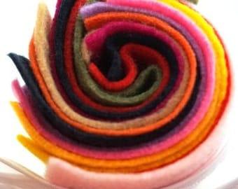 10 Full Size Different Colour Sheets of Kunin Ecofi Rainbow Felt Sheets  - Washable & Ironable Eco Felt