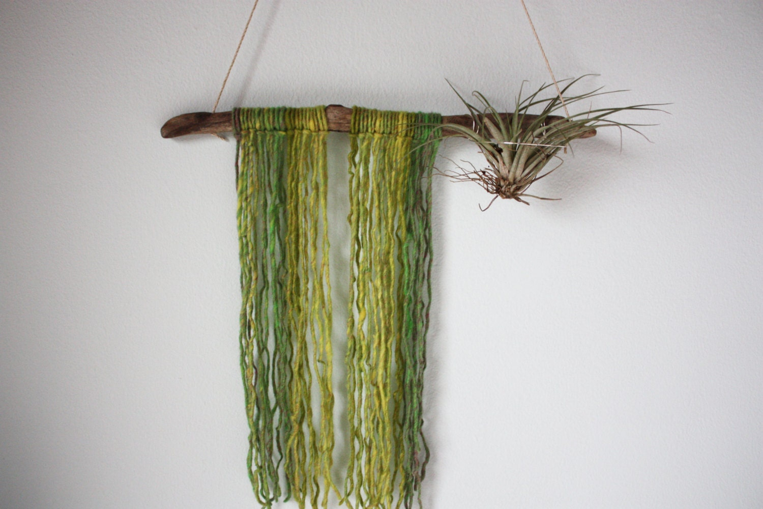 Driftwood air plant hanger yarn wall hanging moss for Air plant wall hanger