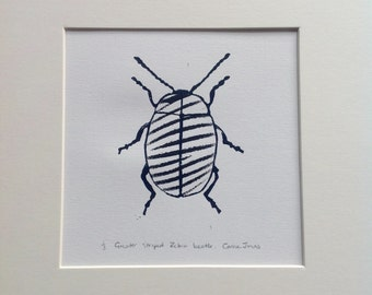 Greater striped zebra print beetle.