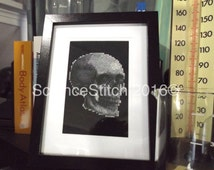 Anatomical Skull Cross Stitch - Handmade and Framed! Great for display or gift!