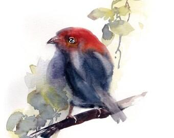 Painting of Birdie, ORIGINAL Bird Illustration Watercolor Painting, Bird Painting, Minimalist Painting,Bird Wall Art