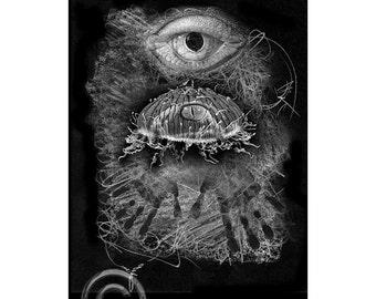 Sea Life #9, Inkjet print  7x9 image on 11x14 archival paper