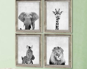 Safari Animal Prints Animal Nursery Prints Modern Nursery Decor Animal Portraits Elephant Zebra Lion Giraffe Living Room Art Animal Photos
