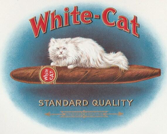 White Cat Inner Cigar Box Label Embossed Stone Litho