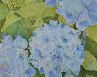 Blue Hydrangeas fine art framed watercolor painting original floral watercolors impressionism flowers hydrangea blue green pink watercolours