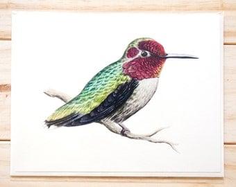 Hummingbird CARD (3-pack)