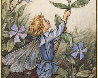 The Periwinkle Fairy - Counted cross stitch pattern in PDF format
