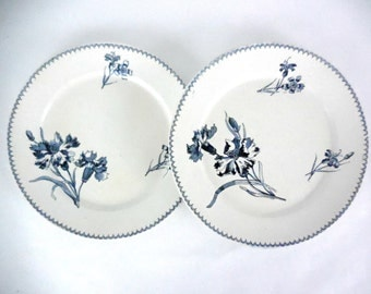 Two Antique French Faience Blue Transferware Sarreguemines Plates 1900 Series Vega. French Vintage