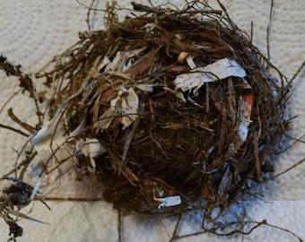 Wildlife,  Birds Nest, Rustic cabin decor, Teaching Aid, Wreath Supply