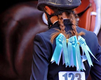 Equestrian Hair Bows for Horse Shows/Beautiful Turquoise Chevron