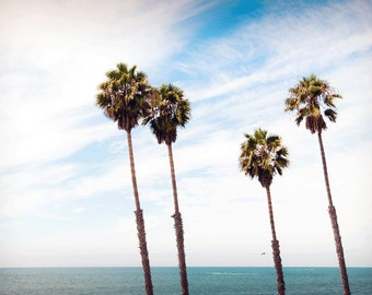 Palm Trees Beach Photography Print or Wrapped Canvas Seascape California Fine Art Photograph Wall Decor