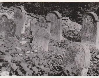 Vintage Photograph - Žamberk Old Jewish Cemetery