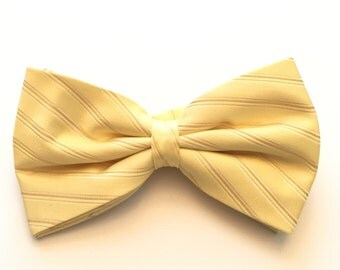 Yellow and White striped bow tie.