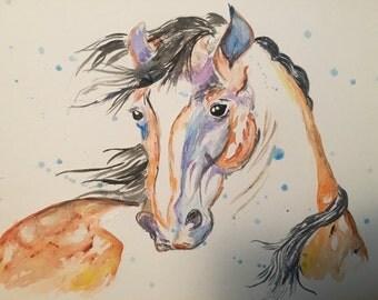Original Art Mustang Horse Watercolor Painting