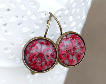 Earrings with real flowers - Queen anne's Lace