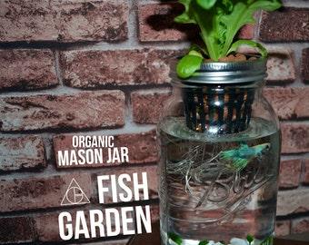 """Trouver """"mason jar"""" dans Extérieur & Jardinage"""