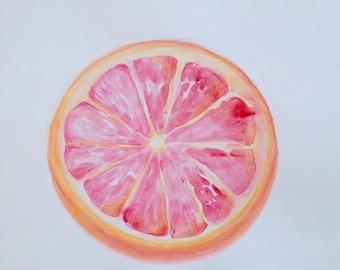 Citrus (Pink Grapefruit Half), watercolor