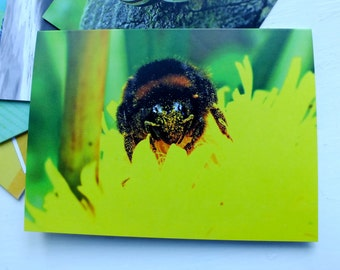 Photo Note Cards- Blank Inside- Stationery