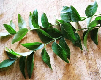 ORGANIC Fresh Curry Leaves