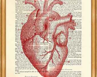 Anatomy Red Heart Image, Dictionary Art Print, Wall Decoration, Home Decor, 8 x 10 inches