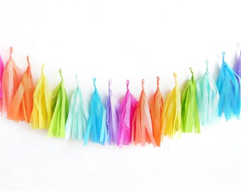 Rainbow Tassel Garland - fringe tissue banner | oh shiny paper co