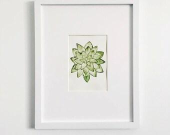 Succulent 3 5x7