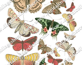 Butterflies 1890's Chromolithographs Digital Collage Sheet Instant Download Wings dcs1302