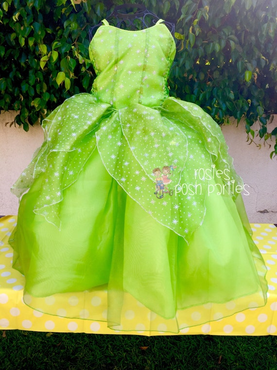 Tinkerbell Fairy dress for Birthday costume or Photo shoot ...