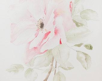 Flower watercolor - Original 8x10 Pink Rose painting