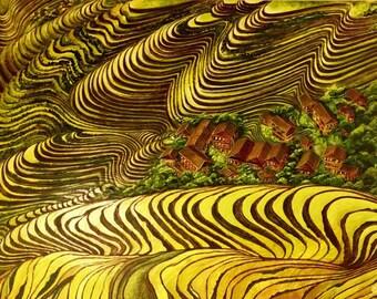 Original Painting ~Multi Media Art ~Acrylic ~Wall Art ~Rice Terraces