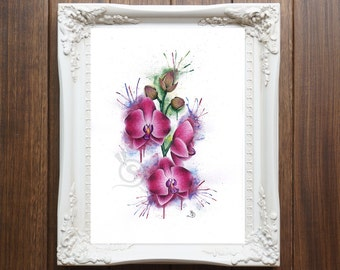 Orchids Original Drawing